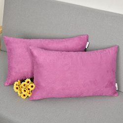 2 Packs Outdoor Lumbar Throw Pillow Covers Cushion Cover Pillow Case for Patio/Couch by Natus We ...