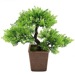 GTidea 10.6 inch Artificial Cedar Bonsai Trees Fake Potted Plants indoor Evergreen Home Office T ...