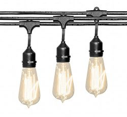 Deneve Outdoor String Lights (48 ft.) with Edison Bulbs – Heavy Duty Garden Hanging Market ...