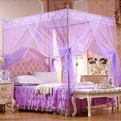 Little rock Romantic Princess Lace Canopy Mosquito Net Twin Full Queen King Bed