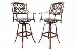 HOMEFUN Outdoor Swivel Bar Stools Cast Aluminum Bistro Pub Patio Bar Height Chairs Set of 2 (Ant ...
