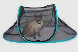 Nala and Company – The Cat House Outdoor Pet Enclosure for Indoor Cats – Portable, V ...