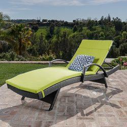 Christopher Knight Home 549 Salem Chaise Outdoor Lounge (Set of 2)