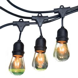 Royal Light Outdoor String Lights 48 ft Thick Bulb with Hanging Sockets Weatherproof Commercial  ...