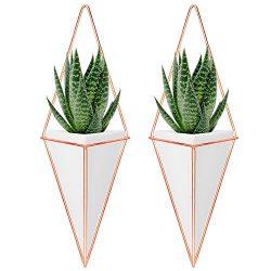 Nellam Ceramic Planter Set – 2 Pcs Modern Geometric Hanging Wall Pots – Copper Frame ...