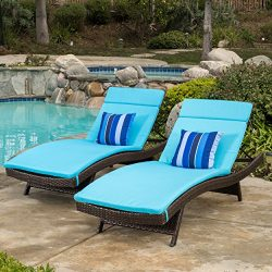 Christopher Knight Home 590 Salem Chaise Outdoor Lounge (Set of 2)