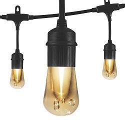 Enbrighten Vintage LED Cafe String Lights, Black, 24 Foot Length, 12 Impact Resistant Lifetime B ...