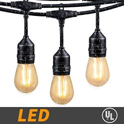 48Ft LED Outdoor String Lights with 15 Dimmable S14 Edison bulbs, Weatherproof Commercial Grade  ...