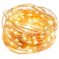TaoTronics LED String Lights 33 ft with 100 LEDs, Waterproof Decorative Lights for Bedroom, Pati ...