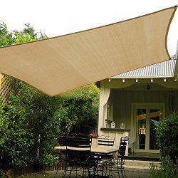 Shade&Beyond 10'x10′ Sun Shade Sail Canopy UV Block for Patio Deck Yard and Outd ...