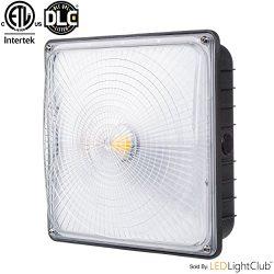 Parmida LED Canopy Light, 45W, 0-10V Dimmable, 5200lm, 110-277VAC, IP65 WATERPROOF, DLC-Qualifie ...