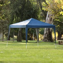 Best Choice Products 10x10ft Outdoor Portable Lightweight Instant Pop Up Gazebo Canopy Tent w/Ca ...