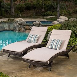 Christopher Knight Home 296395 Salem Outdoor Chaise Lounge