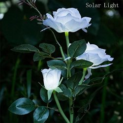 HighlifeS Outdoor Solar Garden Stake Lights – Solar Powered Lights with 3 Rose Flower, Whi ...