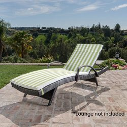 Christopher Knight Home 619 Salem Chaise Outdoor Lounge