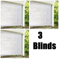 Lewis Hyman 0320166 72″ x 72″ White Roll Up PVC Porch Patio Lanai Blind – Quan ...
