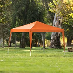 Best Choice Products 10x10ft Outdoor Portable Adjustable Instant Pop Up Gazebo Canopy Tent w/Car ...