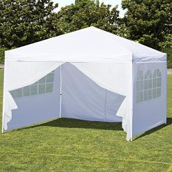 Best Choice Products 10x10ft Portable Lightweight Pop Up Canopy Tent w/Side Walls and Carrying Bag