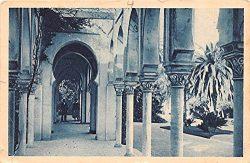 Sous la Pergola Aler Algeria, Alger, Algerie Postcard