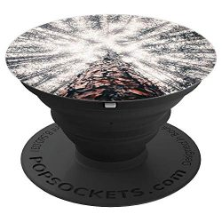 Forest Light Canopy Bark and Tree Climbers – PopSockets Grip and Stand for Phones and Tablets