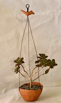 Hanging Pinch Pot – Large