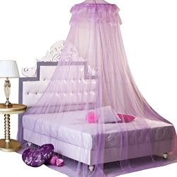 GYBest New Stylish Round Lace Dome Bed Canopy Netting Princess Mosquito Net Purple
