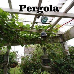 2011 Pergola (bonus tracks)