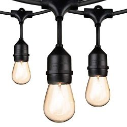Outdoor String Lights 48Ft Edison Vintage Commercial Grade Lights with 15xE26 Base Sockets & ...