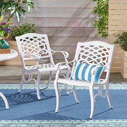 Great Deal Furniture Brody Outdoor White Cast Aluminum Arm Chair (Set of 2), White