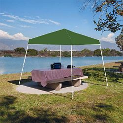 Z-Shade Instant 10 x 10 Foot 190D Taffeta Outdoor Canopy with Carry Bag, Green