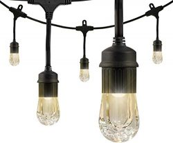 Enbrighten Classic LED Cafe String Lights, Black, 18 Foot Length, 9 Impact Resistant Lifetime Bu ...