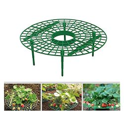 5pc Strawberry Plant Growing Supports Keep Strawberries Off Rot in The Rainy Days, Patio Lawn Ga ...