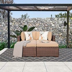 Patiorama 4PC Outdoor Conversation Set All Weather Wicker Patio Sectional Sofa Bed Set with Love ...