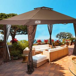 LAKE & TRAIL 13'x13′ UV Block Sun Shade Canopy with Hardware Kits, Gazebo Shade  ...