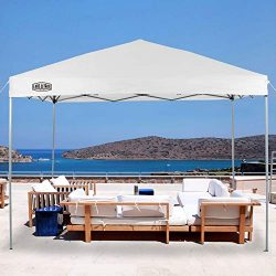 LAKE & TRAIL 10'x10′ Striaght Leg UV Block Sun Shade Canopy with Hardware Kits,  ...