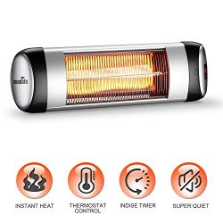sundate Outdoor Heater, Electric Wall-Mounted Radiant Home Heater with Remote Control, Indoor/Ou ...