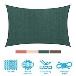 PHI VILLA Sun Shade Sail Rectangle 8'x12′ Dark Green Patio Canopy Cover – UV B ...