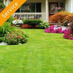 Lawn, Garden or Yard Maintenance – 8 Hours