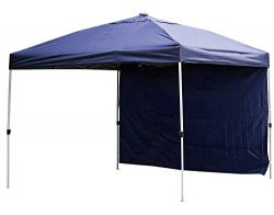 Backyard Expressions – 10 x 10 Outdoor Canopy Tent – Free Bonus Solar LED Lights and ...