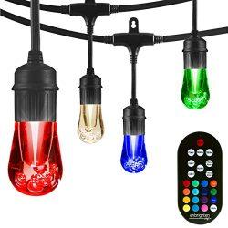 Enbrighten Vintage Seasons LED Warm White & Color Changing Café String Lights, Black, 24ft., ...