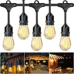 JUSLIT Outdoor String Lights, 48Ft LED Patio Christmas String Light, 16 Edison Bulbs, 15 Hanging ...