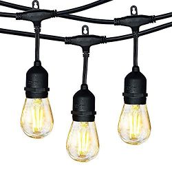 Hykolity Outdoor String Lights, 48FT LED String Light with 15 Hanging Sockets, Dimmable 17x2W Vi ...
