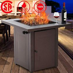 Fire Pit, Propane Gas Outdoor Firepit Portable Table Fire Pit with Lava Rack Burner, 48,000 BTU  ...
