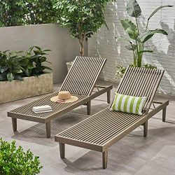 Christopher Knight Home Nadine Outdoor Adjustable Wood Chaise Lounge (Set of 2) by Grey